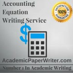 Accounting equation paper essay