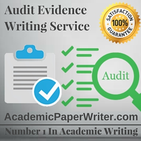 Audit Evidence Writing Service