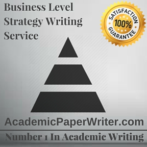 Business Level Strategy Writing Service