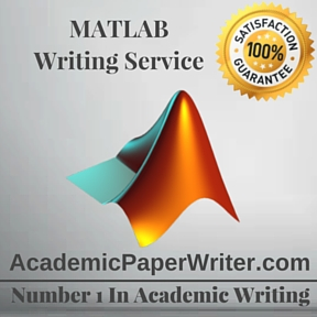 MATLAB Writing Service