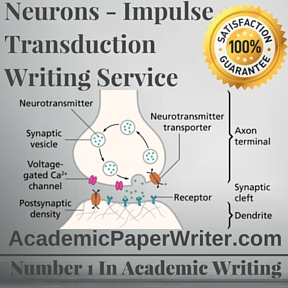 Neurons - Impulse Transduction Writing Service