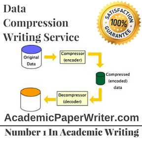 Data Compression Writing Service