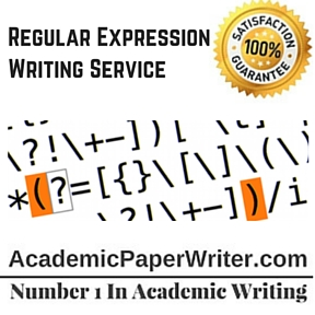 Regular Expression Writing Service