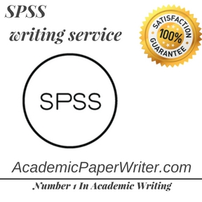 SPSS writing service