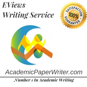 EViews Writing Service